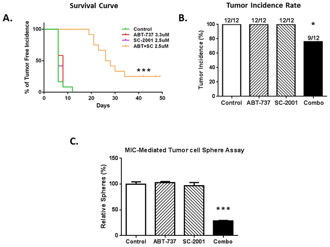 The combination of SC-2001 and ABT-737 inhibited the MIC-mediated tumor formation in vivo.