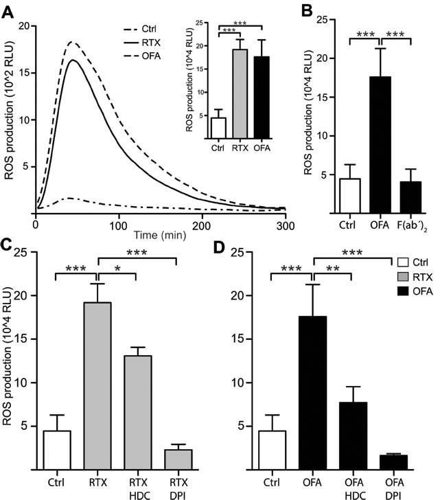 Rituximab and Ofatumumab triggered ROS production by monocytes.