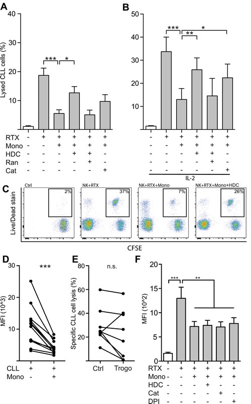 Monocytes restricted NK cell ADCC against autologous leukemic cells by production of ROS.