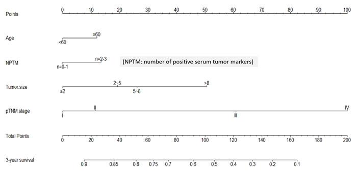 Nomogram of NPTM and clinicopathological traits in the training cohort
