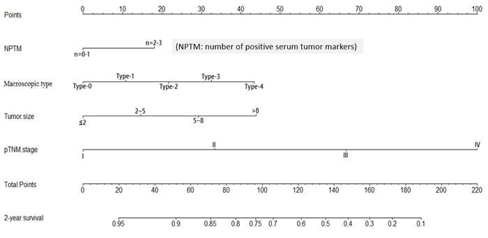 Nomogram of NPTM and clinicopathological traits in the validation cohort
