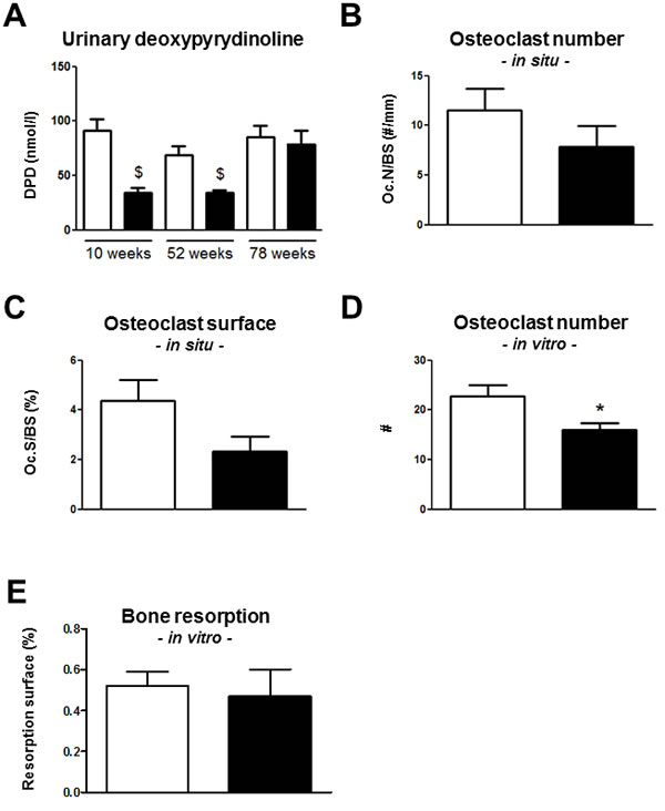Bone resorption is reduced in
