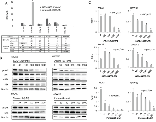 Inhibition of cell proliferation by SAR245409 and pimasertib.
