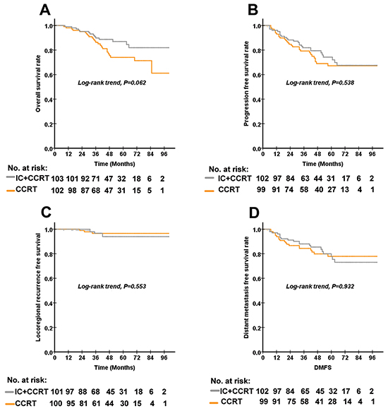 The Kaplan–Meier curves for OS, PFS, LRFS and DMFS according to the treatment arm in 103 paired (a total of 206) patients with high-risk nasopharyngeal carcinoma.
