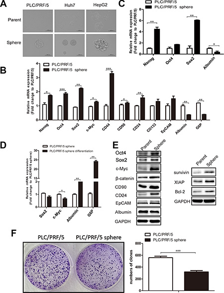 PLC/PRF/5 sphere cells possess multiple properties associated with liver CSCs.