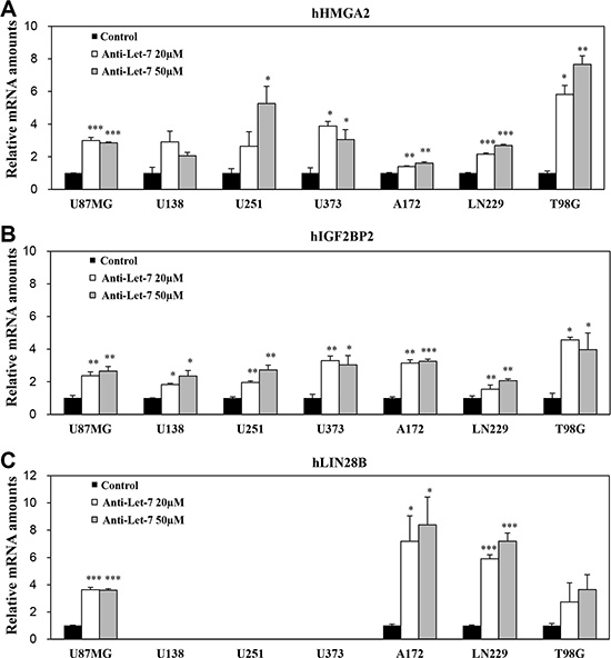 Anti-Let-7 mediates differential expression of its target genes in glioblastoma cell lines and glioblastoma patient-derived cells.