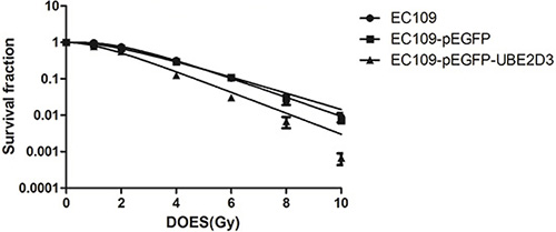 Effects of UBE2D3 overexpression on the radiosensitivity in EC109 cells.
