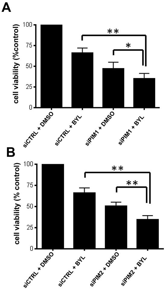 PIM knockdown sensitizes GBM cells to BYL-719.