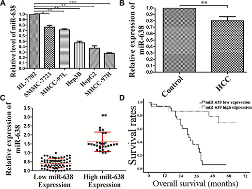 The expression of miR-638 was reduced in HCC cell lines and clinical specimens.
