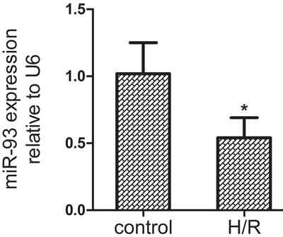 The expression of miR-93 in H9c2 cells by qRT-PCR after H/R treatment.