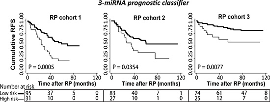 Kaplan-Meier plots with prostate-specific antigen recurrence as end point.