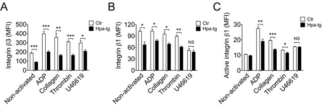 Reduced expression of integrin β3 and β1 in Hpa-tg platelets.