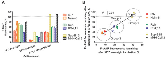Retention of F-cAMP in hematopoietic cell lines.
