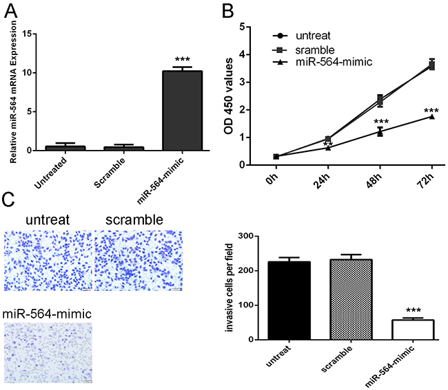 miR-564 Inhibits glioblastoma cell proliferation and invasion.