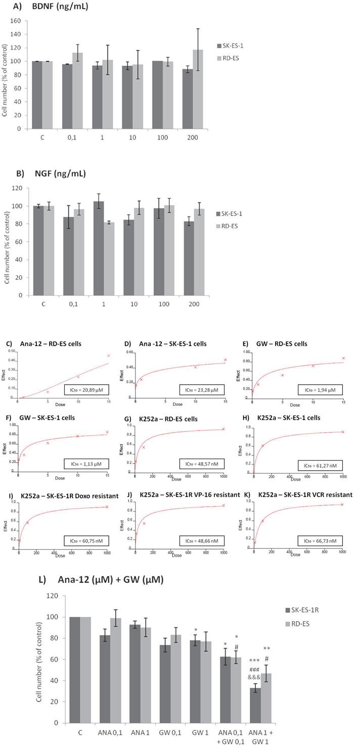 Inhibition of TrkA or TrkB reduces ES cell proliferation.