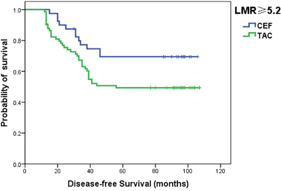 Kaplan–Meier curves for DFS in luminal patients with a LMR ≥5.2 according to the chemotherapy regimen.