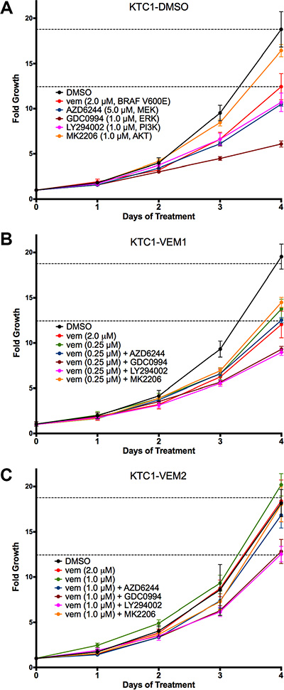 Four-day growth curves performed on KTC1 subpopulations (A) KTC1-DMSO; (B) KTC1-VEM1; (C) KTC1-VEM2) with and without PI3K/AKT and RAF/MEK/ERK pathway inhibitors.