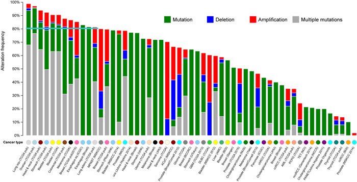 The mutational landscape for the 100 top-ranked GC-associated genes in multiple cancers.