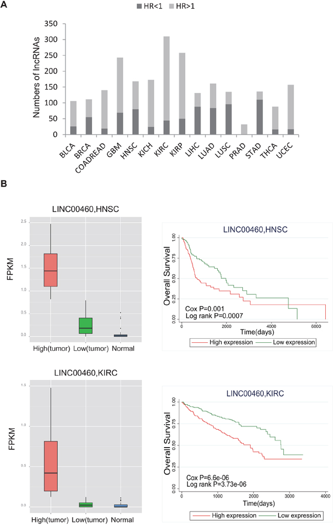 Evaluation of the prognostic power of lncRNAs.