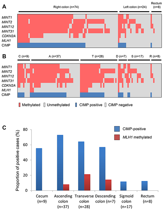 Methylation profiles in BRAF-mutant lesions.