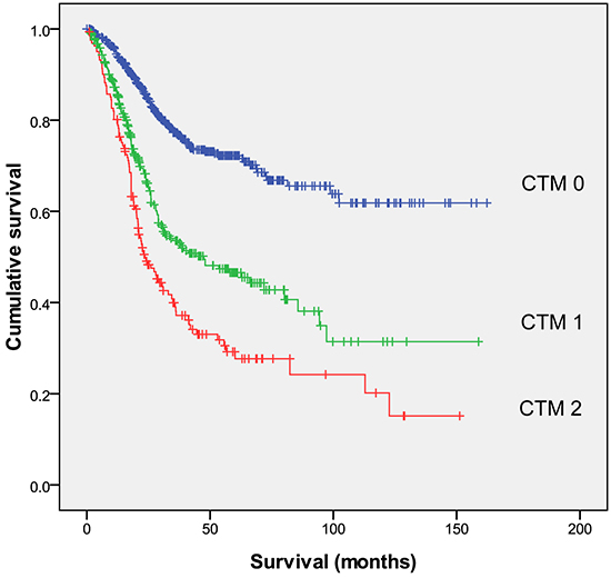 Relationships among the three CTM groups (CTM 0, CTM 1 and CTM 2, from top to bottom) and overall survival.