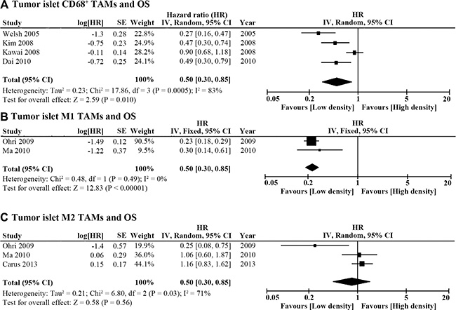 Forest plot of HR for TAM density in the tumor islet and OS.