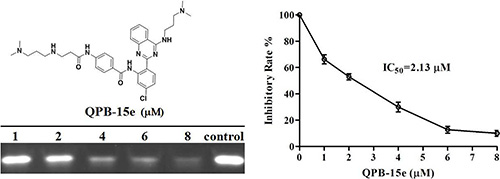 PCR stop assay with QPB-15e and c-myc Pu27 DNA.