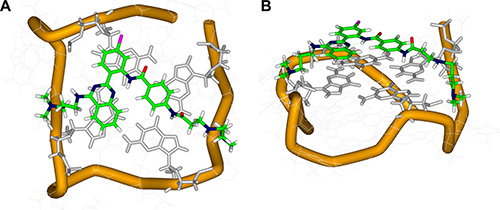 Top (A) and side (B) views of the docking structure of the complex between QPB-15e and c-myc G-quadruplex DNA.