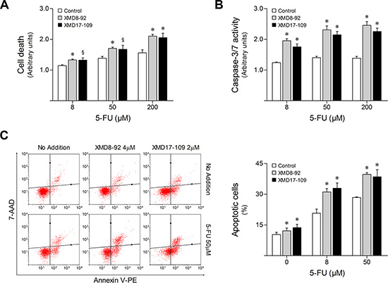 ERK5 pharmacological inhibition increases HCT116 cell sensitivity to 5-FU.