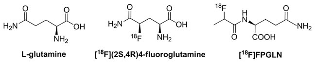 Chemical structures of L-glutamine, [