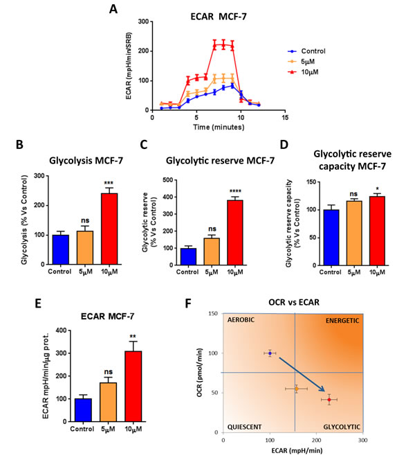 Atovaquone treatment increases glycolysis in MCF7 breast cancer cells.