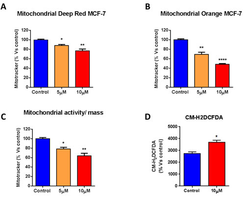 Atovaquone treatment decreases mitochondrial mass and membrane potential, with an increase in ROS levels.