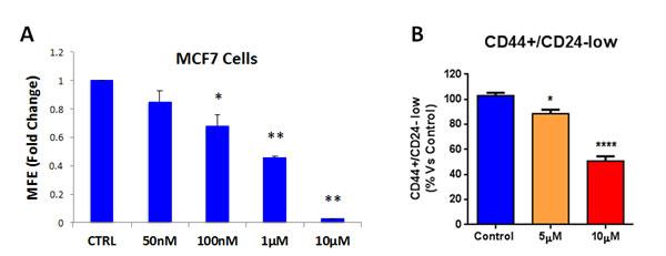 Atovaquone treatment inhibits MCF7-derived CSCs.