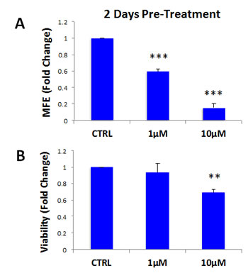 Atovaquone pre-treatment preferentially inhibits CSCs, with minor effects on the viability of bulk cancer cells.