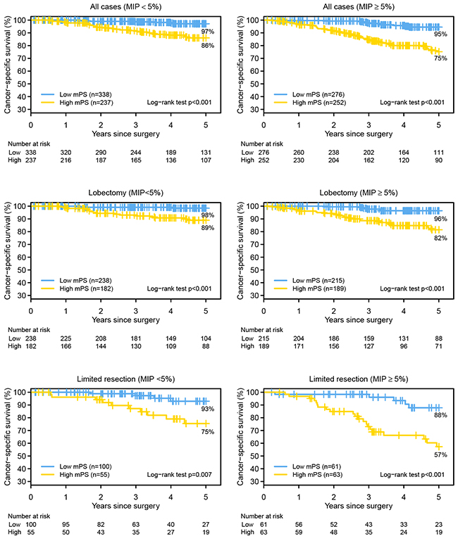 The Kaplan-Meier survival estimates for the high and low molecular prognostic score (mPS) groups, by the absence (<5%) or presence (≥5%) of micropapillary (MIP) pattern and surgical procedure, are shown.