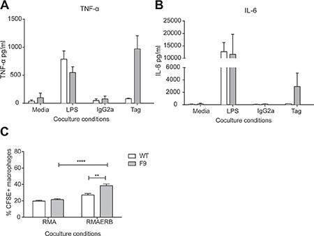 Antigen specific responses from CAR+ monocytes.