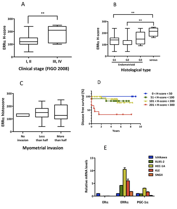 ERRα expression in uterine endometrial cancer