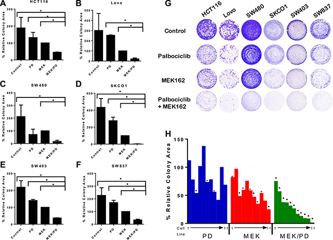 Combination of MEK and CDK4/6 inhibitors markedly attenuates cell growth in vitro in a panel of KRAS mutant CRC cell lines.