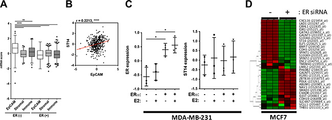 Evaluation of ST14/Prss14 expression in breast cancer patients and cancer cell lines.