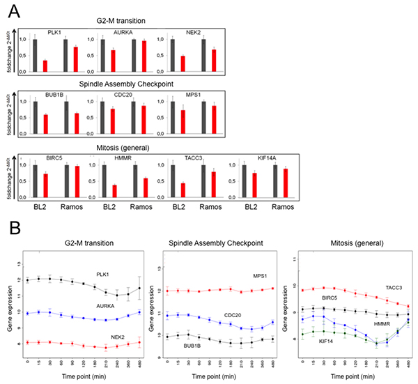 Expression of genes from the BCR.1 gene module is deliberately suppressed in lymphoma cells.