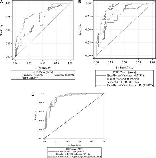 ROC curves for each of the 3 biomarkers (A), combined biomarkers (B), and combined biomarkers and forced age, gender and grade (C) with AUC for prediction of patient's metastasis status.