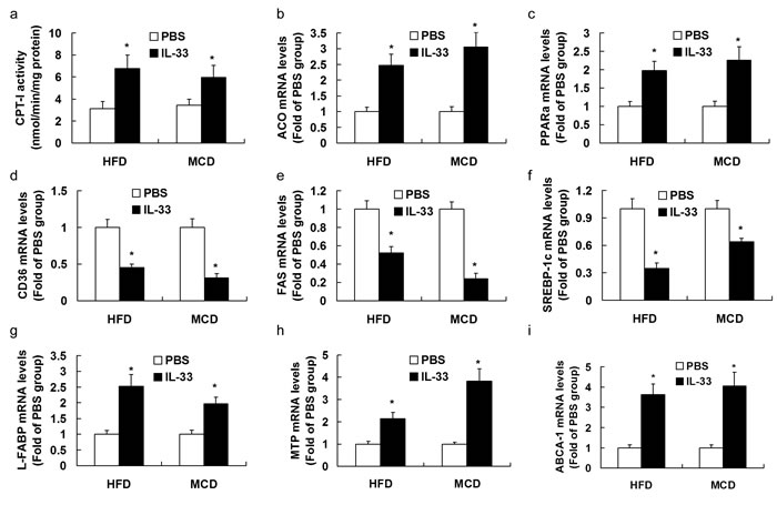 Mice were exposed to HFD or MCD, and treated with recombinant IL-33 or PBS.