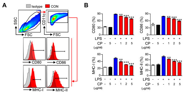 Cisplatin impaired the phenotypic maturation of LPS-activated DCs by down-regulating