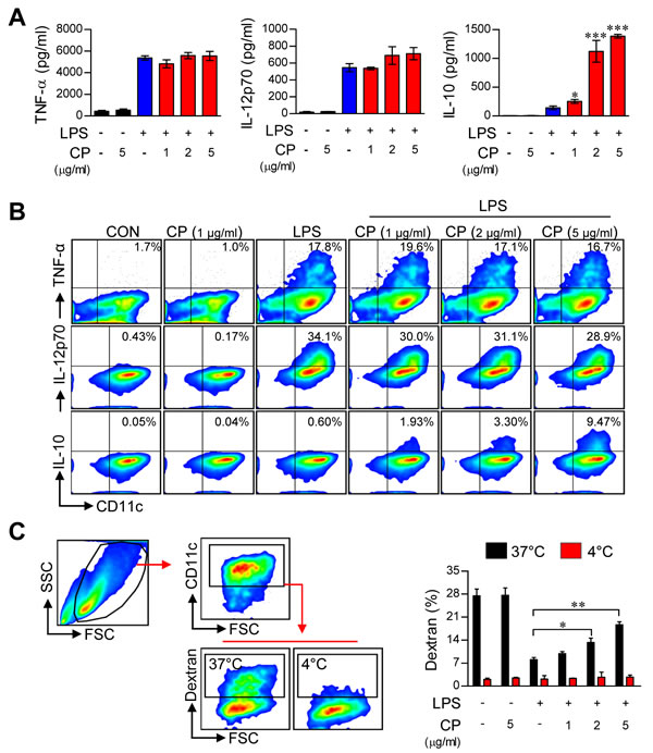 Cisplatin increased IL-10 production and endocytosis in LPS-activated DCs.