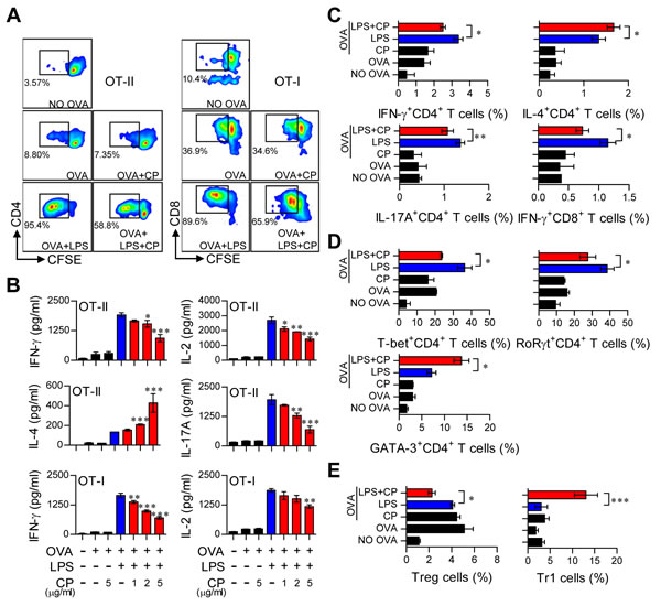 Cisplatin reduced the capacity of LPS-activated DCs to stimulate T cell proliferation and the Th1 response, polarized the Th2-type T cell response, and facilitated the generation of IL-10-producing Tr1 T cells.