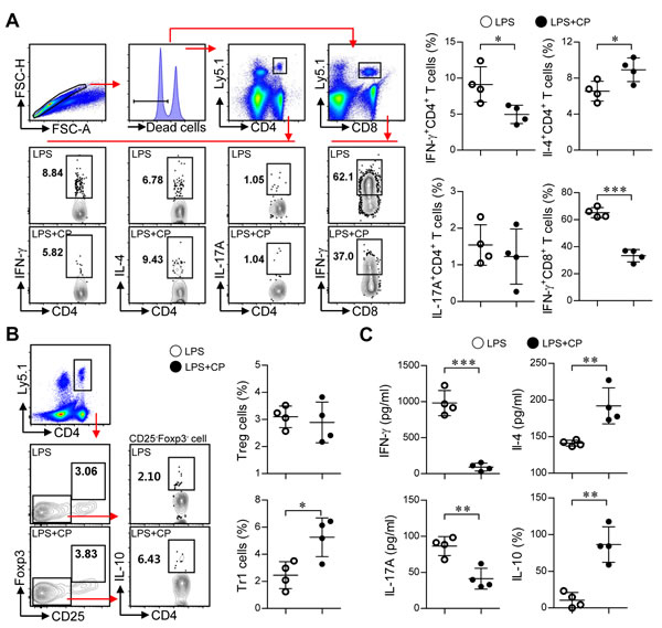 Cisplatin/LPS-primed DCs induced the generation of Th2-type cells and IL-10-producing Tr1 cells