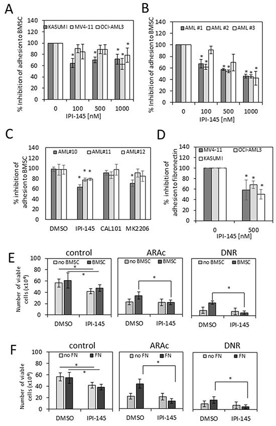 IPI-145 inhibits adhesion of AML blasts to primary BMSC.