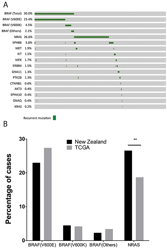 Overview of the mutational landscape in New Zealand population.