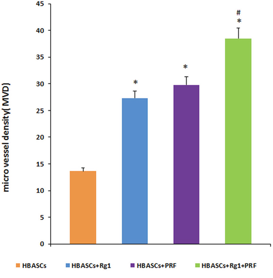 Micro vessel density (MVD) in the neogenetic tissue.