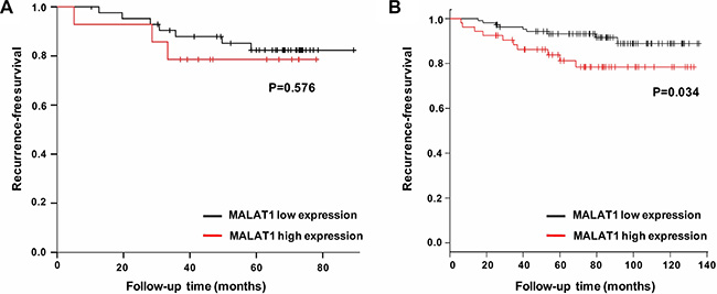 Survival analysis in tamoxifen treated ER-positive breast cancer patients based on MALAT1 expression.